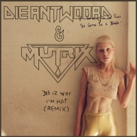 Die Antwoord - This Is Why I'm Hot