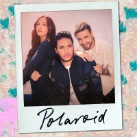 Jonas Blue feat. Liam Payne & Lennon Stella - Polaroid