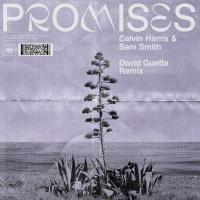 Calvin Harris - Promises (David Guetta Remix)