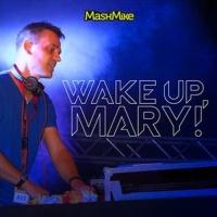 Avicii - Wake Up, Mary!