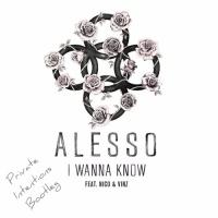 Alesso - I Wanna Know - Single