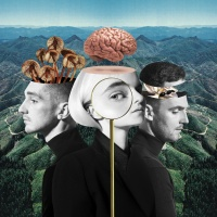 Clean Bandit - What Is Love