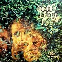 - 10 000 Lepes
