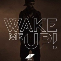 Avicii - Wake Me Up (Acoustic Version)