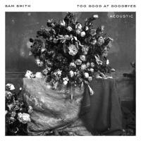Sam Smith - Too Good At Goodbyes Remixes