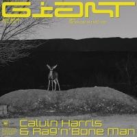 Calvin Harris & Rag'N'Bone Man - Giant