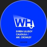 Evren Ulusoy - Mr. Crowley (Frink Remix)