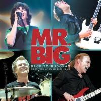 Mr. Big - Back To Budokan