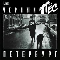 - Черный Пёс Петербург