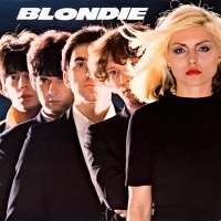 Blondie - In The Flesh