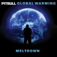 Pitbull - Drinks for You (Ladies Anthem)