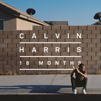 Calvin Harris - I Need Your Love