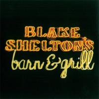 Blake Shelton - Some Beach