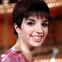 Liza Minnelli - There Goes The Ball Game
