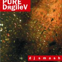 - PURE-DяgileV - CD3 (BONUS)