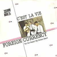 Foreign Currency - You Can Repair My Broken Heart