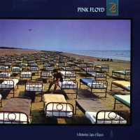 - A Momentary Lapse Of Reason