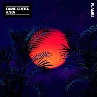 David Guetta feat. Sia - Flames