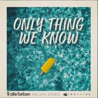 Alle Farben feat. Kelvin Jones & Younotus - Only Thing We Know