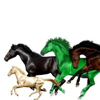 Lil Nas X & Billy Ray Cyrus feat. Young Thug & Mason Ramsey - Old Town Road (Remix)