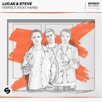 Lucas & Steve feat. Haris - Perfect