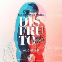 Carla Morrison - Disfruto (Audioiko Remix)
