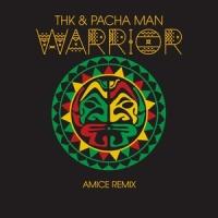 Pacha Man - Warrior
